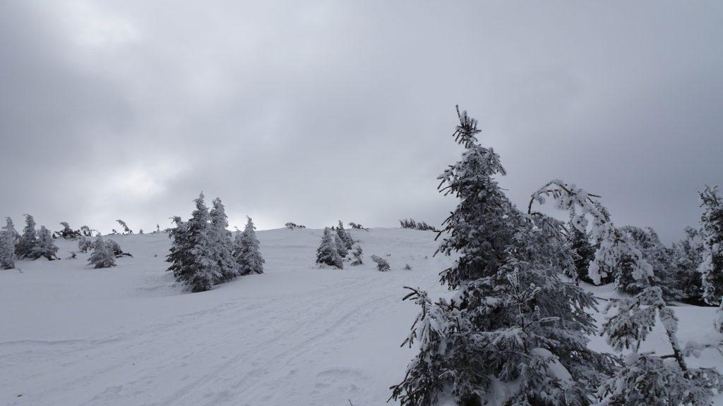 Last meters towards Stuhleck